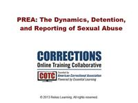 PREA: Dynamics of Sexual Abuse in Correctional Systems