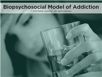 Biopsychosocial Model of Addiction